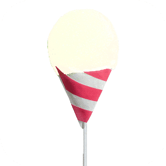 Snow Cone Syrup Mix Litchi