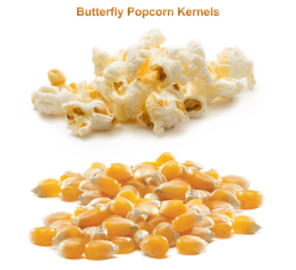Butterfly Popcorn Kernels & Seeds
